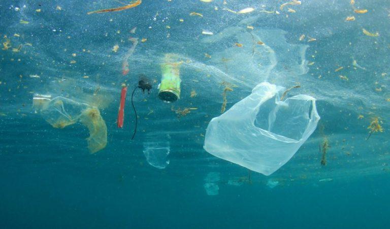 Devolver garrafas de plástico vai dar prémio: Os oceanos vão ficar ricos